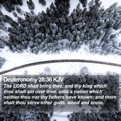 Deuteronomy 28:36 KJV Bible Verse Image