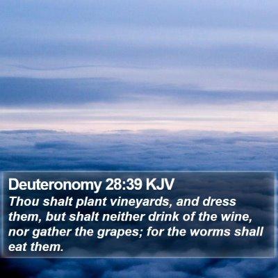 Deuteronomy 28:39 KJV Bible Verse Image