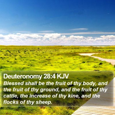 Deuteronomy 28:4 KJV Bible Verse Image