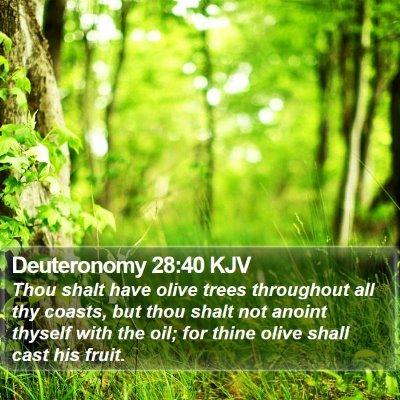 Deuteronomy 28:40 KJV Bible Verse Image