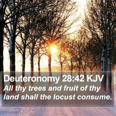 Deuteronomy 28:42 KJV Bible Verse Image