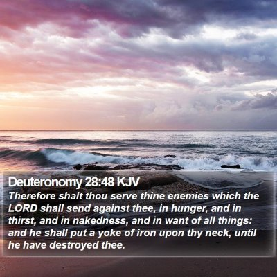 Deuteronomy 28:48 KJV Bible Verse Image