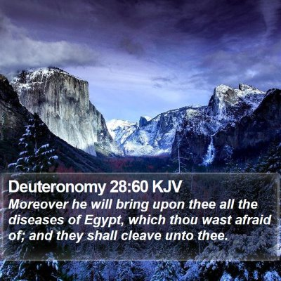 Deuteronomy 28:60 KJV Bible Verse Image