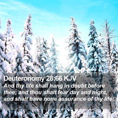 Deuteronomy 28:66 KJV Bible Verse Image