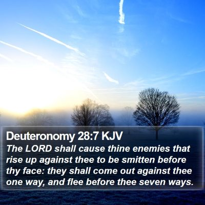 Deuteronomy 28:7 KJV Bible Verse Image
