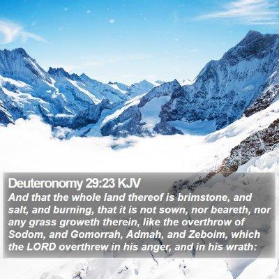 Deuteronomy 29:23 KJV Bible Verse Image