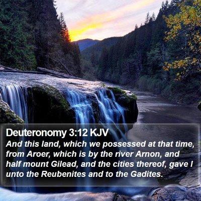 Deuteronomy 3:12 KJV Bible Verse Image