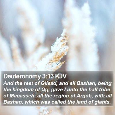 Deuteronomy 3:13 KJV Bible Verse Image