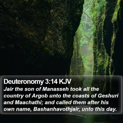 Deuteronomy 3:14 KJV Bible Verse Image