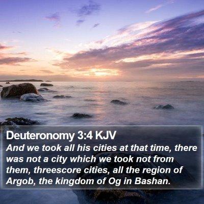Deuteronomy 3:4 KJV Bible Verse Image