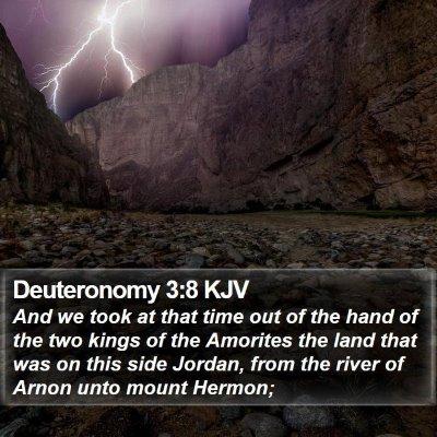Deuteronomy 3:8 KJV Bible Verse Image