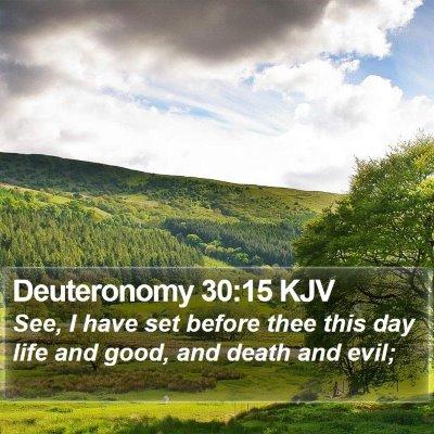 Deuteronomy 30:15 KJV Bible Verse Image