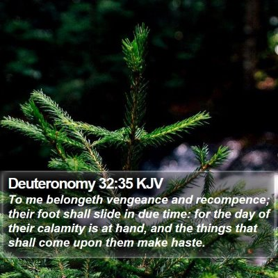 Deuteronomy 32:35 KJV Bible Verse Image