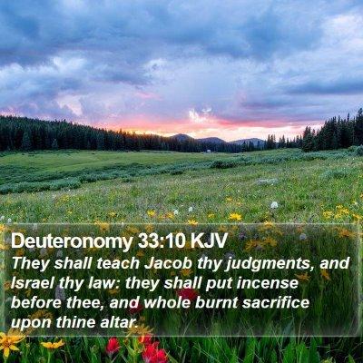 Deuteronomy 33:10 KJV Bible Verse Image