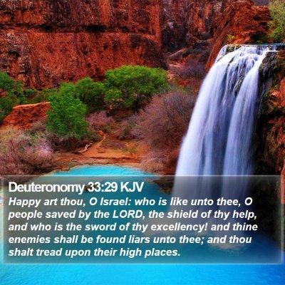 Deuteronomy 33:29 KJV Bible Verse Image