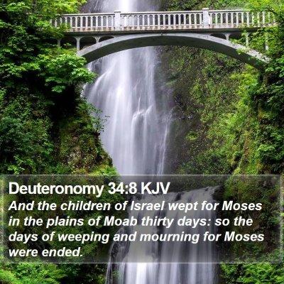 Deuteronomy 34:8 KJV Bible Verse Image