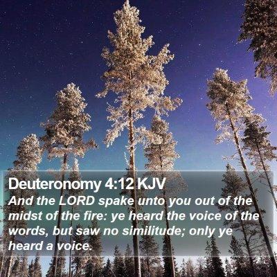 Deuteronomy 4:12 KJV Bible Verse Image