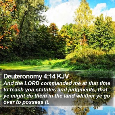 Deuteronomy 4:14 KJV Bible Verse Image