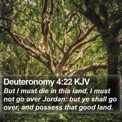 Deuteronomy 4:22 KJV Bible Verse Image