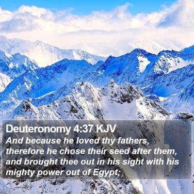 Deuteronomy 4:37 KJV Bible Verse Image