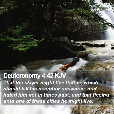 Deuteronomy 4:42 KJV Bible Verse Image