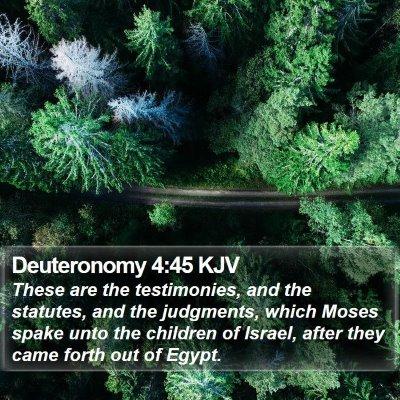 Deuteronomy 4:45 KJV Bible Verse Image