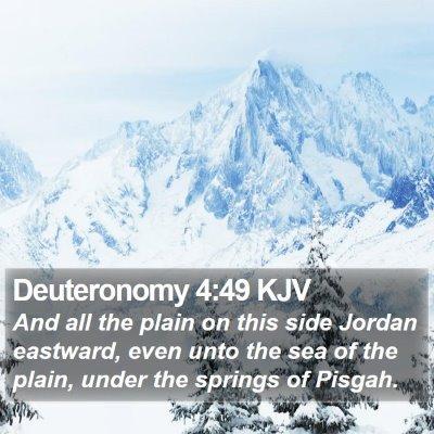 Deuteronomy 4:49 KJV Bible Verse Image