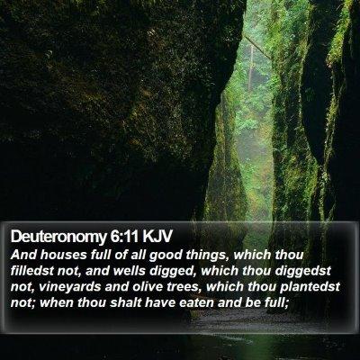 Deuteronomy 6:11 KJV Bible Verse Image