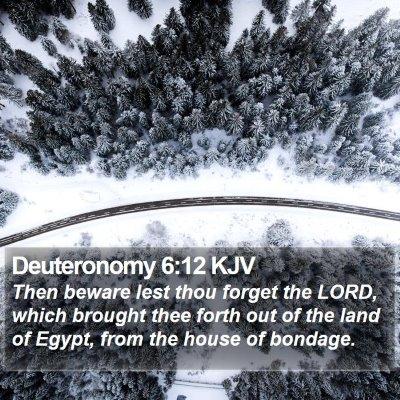 Deuteronomy 6:12 KJV Bible Verse Image