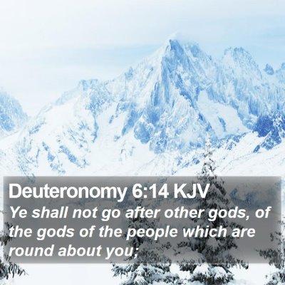 Deuteronomy 6:14 KJV Bible Verse Image