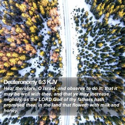 Deuteronomy 6:3 KJV Bible Verse Image