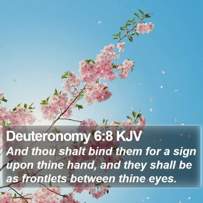 Deuteronomy 6:8 KJV Bible Verse Image