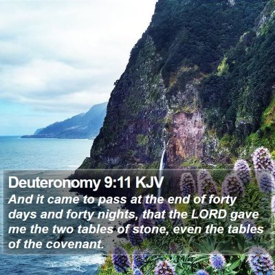 Deuteronomy 9:11 KJV Bible Verse Image