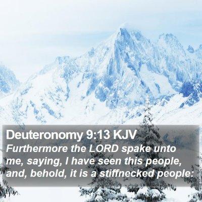 Deuteronomy 9:13 KJV Bible Verse Image