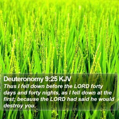 Deuteronomy 9:25 KJV Bible Verse Image