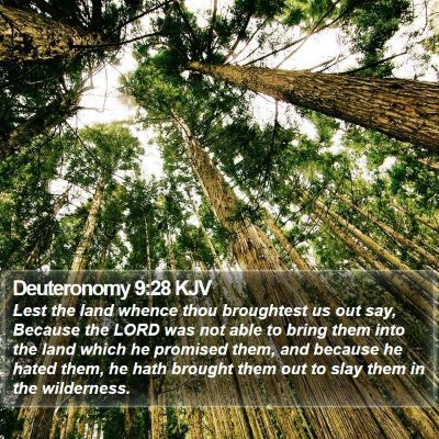 Deuteronomy 9:28 KJV Bible Verse Image