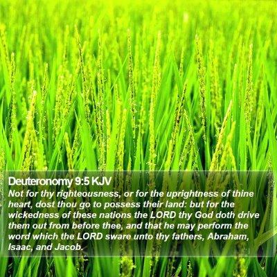 Deuteronomy 9:5 KJV Bible Verse Image