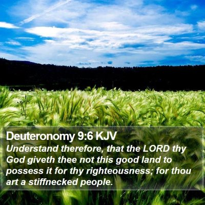Deuteronomy 9:6 KJV Bible Verse Image