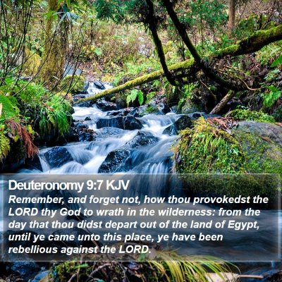 Deuteronomy 9:7 KJV Bible Verse Image
