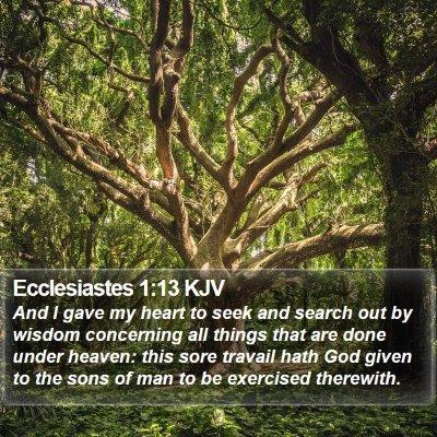 Ecclesiastes 1:13 KJV Bible Verse Image