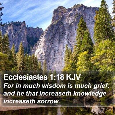 Ecclesiastes 1:18 KJV Bible Verse Image