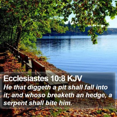 Ecclesiastes 10:8 KJV Bible Verse Image