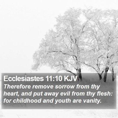 Ecclesiastes 11:10 KJV Bible Verse Image