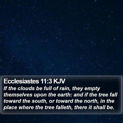 Ecclesiastes 11:3 KJV Bible Verse Image