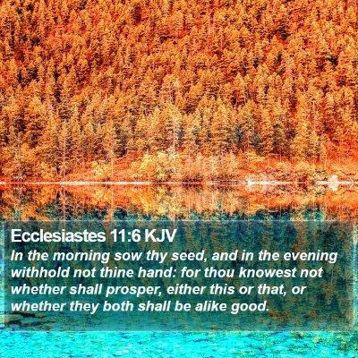 Ecclesiastes 11:6 KJV Bible Verse Image