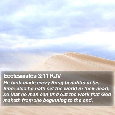 Ecclesiastes 3:11 KJV Bible Verse Image