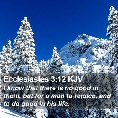 Ecclesiastes 3:12 KJV Bible Verse Image