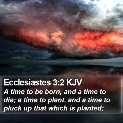 Ecclesiastes 3:2 KJV Bible Verse Image
