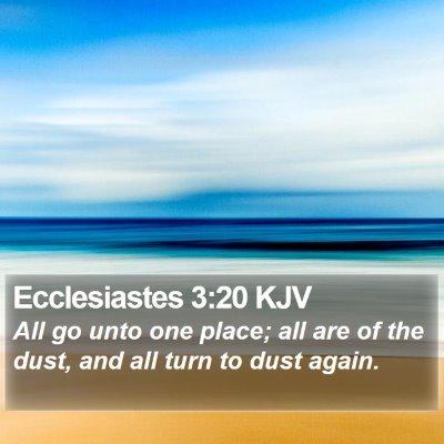 Ecclesiastes 3:20 KJV Bible Verse Image