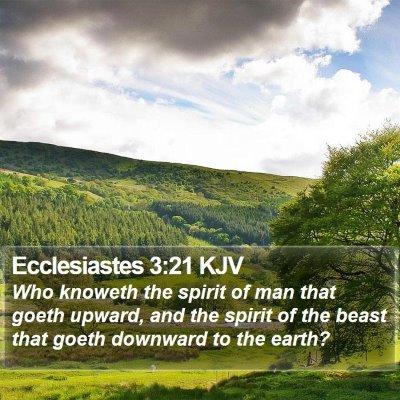 Ecclesiastes 3:21 KJV Bible Verse Image